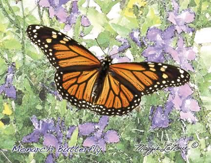 Monarch Butterfly cards
